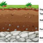 ilustración capas del suelo